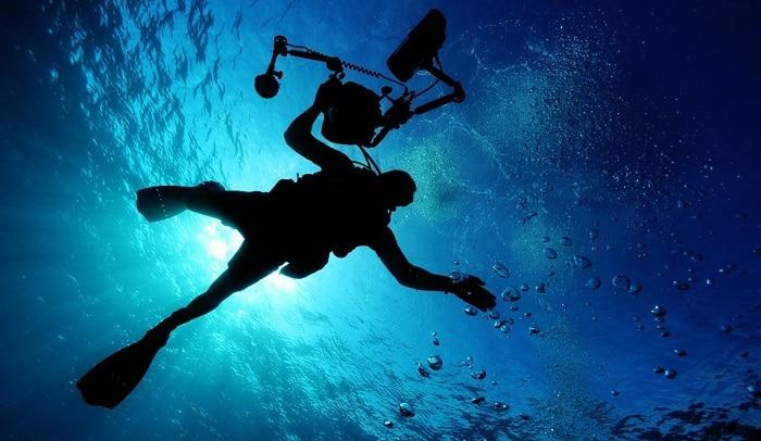 immersioni isola del giglio