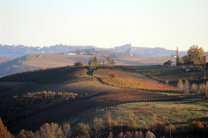Foliage in Italia - Langhe