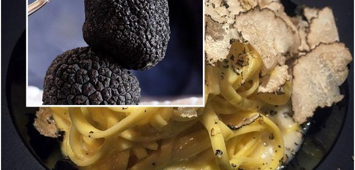 tartufo di monferrato